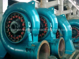 Mini hidro (água) Hydropower/Hydroturbine do gerador de turbina de Francis
