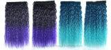 Karten-Haar-Extensionen der Außenhandel-lockiges Haar-Farben-Steigung-fünf