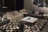 Cuoio del salone e sofà del tessuto con il tavolino da salotto (LST-003)
