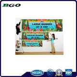 Impression de Digitals de toile de drapeau de câble de PVC Frontlit (500dx1000d 18X12 610g)