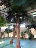 La décoration plante le palmier artificiel de Washington