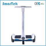 Smartek scooter électrique de Gyroskuter de panneau de vol plané de scooter de 10 pouces avec la poignée de commande S-011