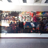 La nueva moda imprimió el mural de la pared de la decoración
