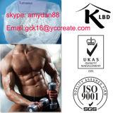 Pó Turinabol oral da pureza elevada de 99% para o Bodybuilding