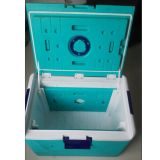 47L Digitalanzeige Eis-Gezeichneter abkühlender Transportage Kasten (HP-CL47E)