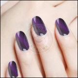 Chamäleon-Effekt-Pigment der Nagel-Schönheits-3D