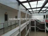 Construcción de /Steel del taller y del almacén de la estructura de acero