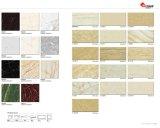フォーシャン(8D690)の大理石のタイルの建築材料