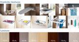 Prateleiras abertas da tevê do Wardrobe de madeira & de vidro da porta