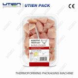 Máquina de embalagem automática Thermoformer do vácuo de Thermoforming da galinha (DZL)