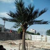Décoration de jardin Décoration en gros Plastique en plein air Arbre à la noix de coco artificiel