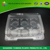 Wegwerfmitnehmerplastiknahrungsmittelbehälter