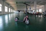 Самокат удобоподвижности e предложения фабрики Wellsmove урбанский складывая 300W
