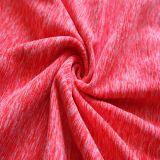 Tessuto del Knit di Gagt del ciclo con Antipilling