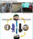 Prix submersible électrique de pompes à eau d'offre d'usine avec les meilleures marques