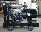 10kw o gerador, tipo silencioso, de tipo automático, água refrigerou o tipo