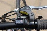 Batería de litio Venta caliente 29 pulgadas de neumático montaña eléctrica E ciclo
