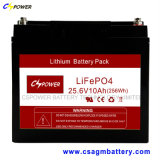 batteria di litio 24V50ah LiFePO4 con vita più lunga 20years