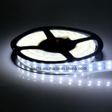 Impermeable 12V Doble Fila 5050 tira del LED para iluminación del coche