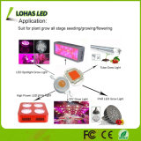 3V 12V 18V haute puissance LED COB puce 10W 20W 30W 50W 100W COB LED Grow Light
