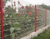Горячая загородка сетки /Welded загородки ячеистой сети сбываний/загородка сада
