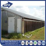 絶縁された低価格のニースの品質の鶏の家禽の家