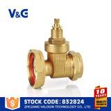 Geflanschter duktiler Eisen-Pumpen-Absperrschieber (VG-B20602)