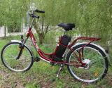 字体の中断が付いている36V10ah Lead-Acid電池の女性Eバイク