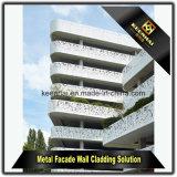 Panneaux de revêtement en aluminium extérieurs de mur de façade enduite de poudre pour la décoration