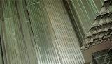 電流を通された軽い鋼鉄キールによって中断されるFurringチャネルの天井システム
