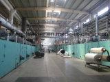 Vendita verde del cuoio del PVC bene in Europa (C-159)