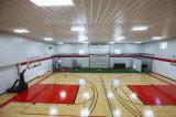 Здание рифленого листа структуры стальной рамки для баскетбольной площадки