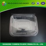 Freie Plastikwegwerfzwischenlage-verpackenkasten