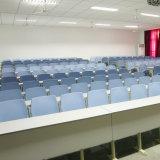 Silla plástica, asiento plegable del estadio, silla plástica de la alta calidad, silla plástica de la escuela (R-P238)