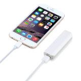 Service d'OEM Mobile Charger 2600mAh avec sortie USB