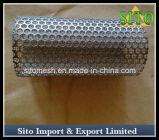 Filtre perforé de /Cartridge de filtre d'acier inoxydable