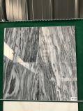 Bardiglio元の中国のNuvolatoの曇った灰色の大理石の平板