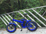500W 48V plegable la bicicleta gorda Rseb507 del neumático de la playa eléctrica