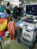 Scanner di ultrasuono di Doppler di colore del carrello di Cansonic