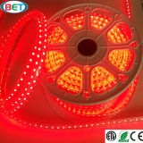 Indicatori luminosi variabili di stanza frontale di negozio LED di colore 1m/Cuttable di SMD5050RGB