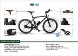 Faltbarer e-Fahrrad-schneller Minifalz-fette Stadt Ebike