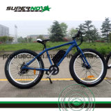 뚱뚱한 타이어를 가진 정면 LED 가벼운 전기 자전거