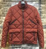 큰 포켓을%s 가진 겨울에 의하여 덧대지는 형식 재킷