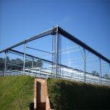 Invernadero prefabricado del marco de la hoja de aluminio del policarbonato con la solos puerta deslizante y sistema de Ventilcation