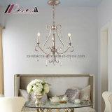 Lámpara pendiente de la lámpara moderna del diseño simple para la hospitalidad
