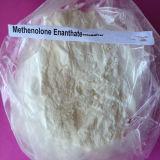 Aufbauendes Steroid-Puder Methenolone Enanthate fertiges Öl Primobolan 100mg