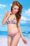 Zwempak van de Bikinis van het Kostuum van Beaching van de Aankomst van Swimwear van de Bikinis van de Druk van Nice het Nieuwe Sexy