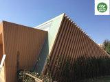 WPC aucun revêtement /Panel de mur de déformation