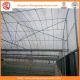 Multi-Überspannung Plastikgewächshaus für Gemüse