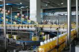 Поверните производственную линию экстрактор сока ключевого проекта смешанную апельсинового сока экстрактора фруктового сока цены промышленный промышленный